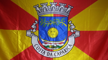 bandeira 350
